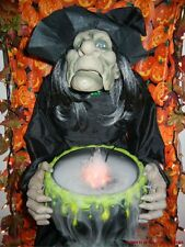 ANIMATED COLOR CHANGING FOGGER HAZEL the WITCH HALLOWEEN DISPLAY (see video)