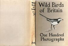KIRKMAN WILD BIRDS OF BRITAIN THROUGH THE CAMERA 100 PHOTOGRAPHS HARDBACK
