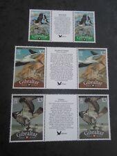 GIBRALTAR 2009 New Birds of Gibraltar defs Gutter Pairs SG 1252a/1259a/1259c mnh
