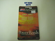Beta Rev-3/EVO Trials Bike Boyesen Power Reeds, 2002-2016. **DUAL STAGE**