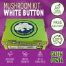 Mushroom Grow Kit - White Button - 100% Natural for 3mths up to 1.5kg Yield