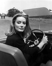 "Tania Mallet James Bond 007 10"" x 8"" Photograph no 3"