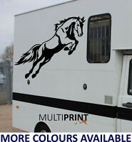 HORSE BOX GRAPHICS STICKERS DECALS SELF ADHESIVE VINYL DECALS HOR1