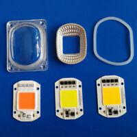 Lens Reflector 50W 30W 20W 110V/220V F LED Flood Light+LED COB Grow White Chip