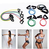 Fitness Latex Elastic Resistance Band Pilates Tube Pull Rope Gym Yoga Equipment