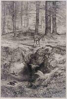 Karl BODMER(*1809), Rothirsch am Weiher mit Enten, Waldlandschaft, Zinkografie