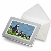 Greetings Card (Grey) - Puffins on Mykines Farow Islands  #16953