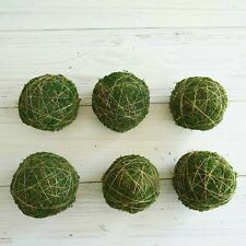 """6 Green 4"""" Natural Moss Ball Ornaments Gold String Vase Fillers Wedding Crafts"""