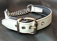 White on Black leather Martingale dog collar