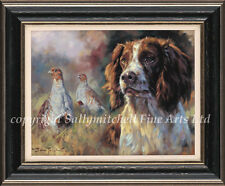 Springer Spaniel and Partridge. ltd edition canvas print by John Trickett.