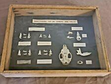 Cabinet de curiosité taxidermie sous cadre 21 cm sur 28 cm