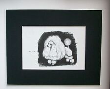 Toy Poodle Dog Print Gladys Emerson Cook Bookplate 1962 8x10 Matted Adorable
