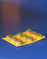 Vasi fioriti per plastico o diorama H0/N pezzi 9 - Krea 6001
