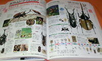 KIDSPEDIA : ENCYCLOPEDIA FOR JAPANESE CHILDRED book from Japan Shogakukan #0856