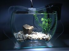 Nano Aquarium Set Completo INANGA,Incl. Decoración,Dekoartikel,Vidrio decorativo