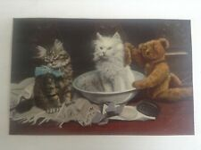 Carte postale fantaisie chat Ours Teddy and pears Tuck and sons Rapholette