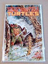 Teenage Mutant Ninja Turtles #37 TMNT [1st Series 1984] High Grade Comic Mirage!