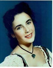 Elizabeth Taylor  Actress Portrait Photograph Excellent Condition 9 x 7  #11