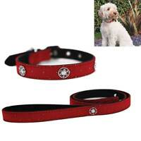 Rosewood Christmas Dog Collar & Lead Set