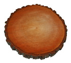 Baumscheiben Erle  5 Verschiedene Durchmesser