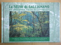 La selva di Gallignano percorso ricco emozioni Orto botanicoBiondi viaggi nuovo
