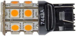 Tail Light Bulb Dorman 7443A-SMD