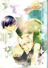 Fullmetal Alchemist doujinshi dojinshi comic Roy x Jean Havoc Season Celery