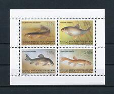 Kyrgyzstan 51a MNH, Fish, 1994