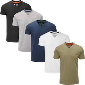 Charles Wilson 5 Pack Plain V-Neck T-Shirt Large, Essentials Type 23