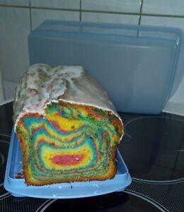 Leckerer selbstgebackener Regenbogen- Kuchen 1,3 kg