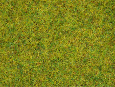 Noch 08151 Herbe Parasite Prairie D'�‰té, 2,5 mm, Contenu 120g 100g =