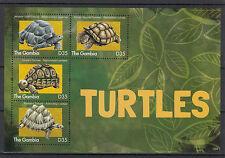 Gambia 2013 MNH Turtles 4v M/S Reptiles Aldabra Tortoises Stamps