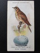 No.37 HEDGE SPARROW  - British Birds & Their Eggs by Ogdens Ltd 1939