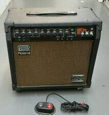 Roland Bolt 100 Tube Guitar Amp  60w /100w