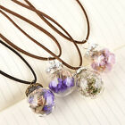 New Women's Handmade Real Dry Flower Round Glass Pendant Necklace Jewelry Gift