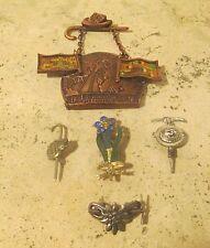 Vintage Alpine Hiking Pins Medallion Lot Wandertag Grosshabersdorf and More