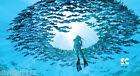 """Microfiber Towel - Female Diver - Scuba Dive - Travel - Large 32"""" x 60"""" - D666"""
