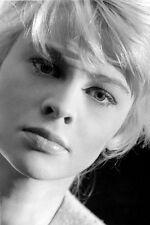 Julie Christie Stunning Studio Close Up 11x17 Mini Poster