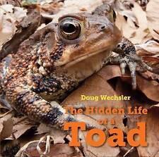 La vida oculta de un sapo (esperanza en el pecho de los sueños), Doug Wechsler | Libro De Tapa Dura