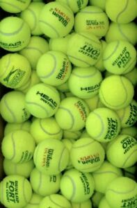 15 20 25 30 Used Tennis Balls Dry & Clean Head Wilson Dunlop For Dogs Cheapest