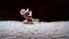 925 Silver Ring Size 9 W/ Pink And Clear Crystal Tested W/ Jsp Testing Kit