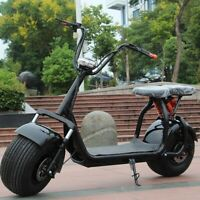 Scooter Électrique Citycoco / LONGUE DISTANCE 1500 W 40 AH  Legal Eec EUROPE