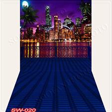 Cityscape10'x20'Computer/Digital Vinyl Scenic Photo Backdrop Background SW020B88