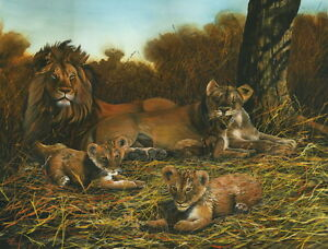 A Mothers Pride Lion Family Limited Edition Print - approx 16 x 12