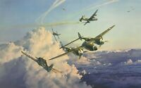 HOSTILE SKY by Robert Taylor aviation art signed by USAAF & Luftwaffe Aces