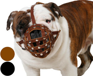 English Bulldog Leather Dog Muzzle American Bulldog Boxer Black Brown