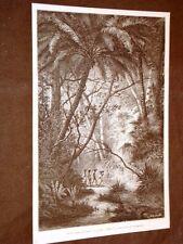 Africa nel 1889 Pres du ruisseau de Camoin