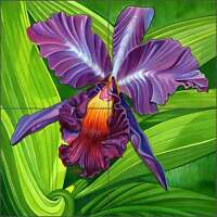 Ceramic Tile Backsplash Mural Agudelo Orchid Flower Floral Art FAA028