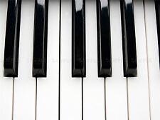 PIANO KEYS BLACK WHITE CLOSEUP MUSIC PHOTO ART PRINT POSTER PICTURE BMP825A