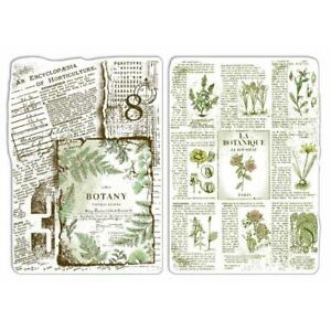 """Ciao Bella - Sign of the Times - 4x6"""" Clear Stamp Set - Botanical Horticulture"""